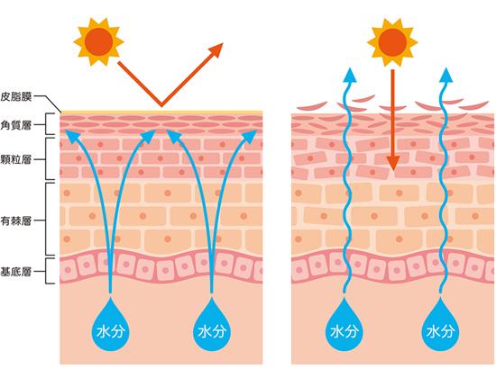 フロスカの炭酸パックの特徴とは
