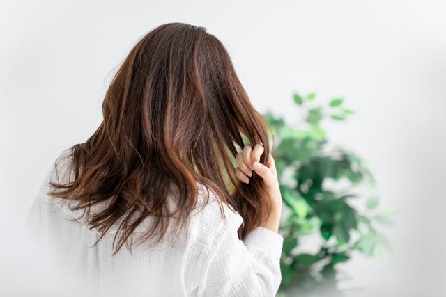 髪のパサつきをケアする6つの方法!美髪で若返る髪質改善法