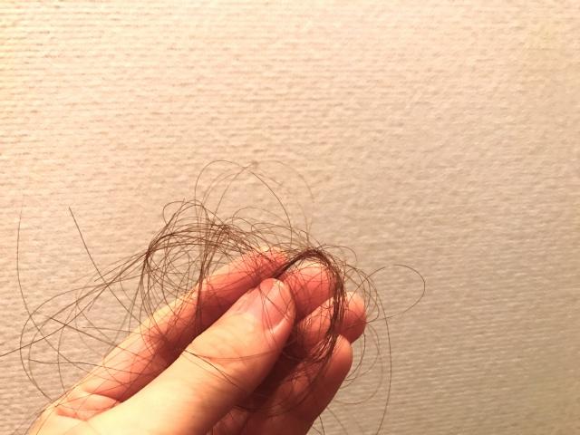 秋に抜け毛が増える理由とは?